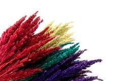 在木背景的五颜六色的花 免版税图库摄影