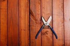 在木背景的剪刀 库存图片