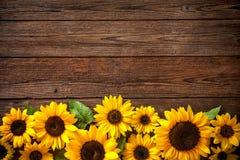 在木背景的向日葵 免版税库存图片