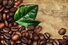 咖啡豆和叶子 库存照片