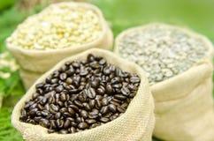 在木背景的咖啡豆用大豆豆 免版税库存照片
