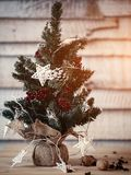 在木背景的圣诞节冷杉木与光以一张新年明信片的设计的星形式 火光拷贝空间 免版税库存图片