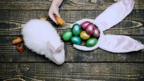 在木背景的复活节彩蛋 关闭哺养野兔用在一张木桌上的红萝卜用复活节彩蛋的男孩的手 影视素材