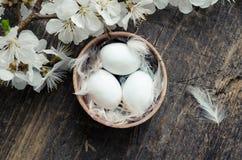 在木背景的复活节彩蛋 免版税图库摄影