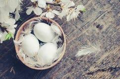 在木背景的复活节彩蛋 免版税库存图片