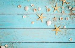 在木背景的夏天贝壳 免版税库存图片