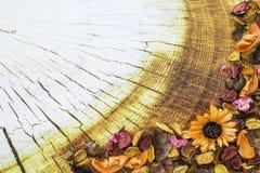 在木背景的干花框架 五颜六色的详细资料外部房子老纹理葡萄酒 免版税库存照片