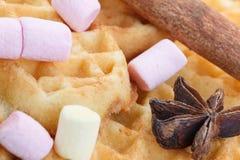 在木背景的心形的曲奇饼,用桂香、茴香和蛋白软糖 库存图片