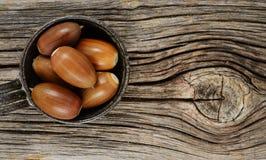 在木背景的成熟橡子 免版税库存照片
