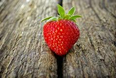 在木背景的成熟红色草莓 库存图片