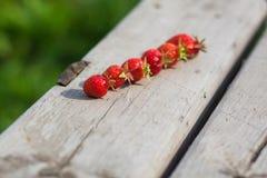 在木背景的成熟草莓在村庄 暑假的概念 免版税库存照片