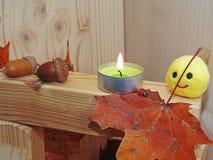 在木背景的抽象秋天构成 库存图片