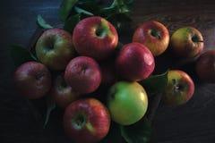在木背景的新鲜的成熟苹果 仍然秋天生活 图库摄影