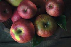 在木背景的新鲜的成熟苹果 仍然秋天生活 库存图片