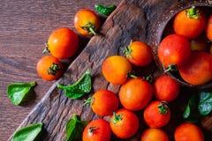 在木背景的新鲜的蕃茄 免版税库存照片