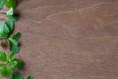 在木背景的新鲜的薄荷叶子 免版税库存照片