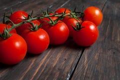 在木背景的新鲜的西红柿 免版税图库摄影