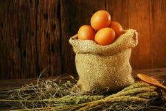 在木背景的新鲜的鸡蛋从农场和为厨师做准备在厨房屋子,有机食品里并且清洗健康的食物, 免版税图库摄影