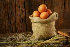 在木背景的新鲜的鸡蛋从农场和为厨师做准备在厨房屋子,有机食品里并且清洗健康的食物 库存照片