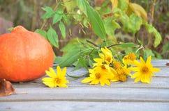 在木背景的新鲜蔬菜 明亮的橙色南瓜,秋天果子背景 季节性秋天的感恩 图库摄影