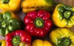 在木背景的明亮,五颜六色,美丽,成熟胡椒 免版税库存图片
