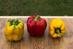 在木背景的明亮,五颜六色,美丽,成熟胡椒 图库摄影