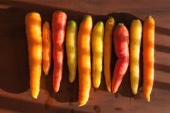 在木背景的未加工的五颜六色的红萝卜菜 免版税库存图片