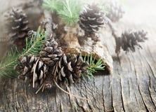 在木背景的杉木锥体 免版税库存图片