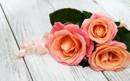 在木背景的桃红色玫瑰 图库摄影