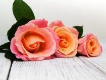 在木背景的桃红色玫瑰 库存照片