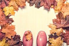 在木背景的桃红色gumboots 库存照片