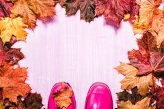 在木背景的桃红色gumboots 免版税图库摄影