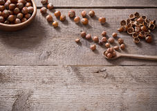 在木背景的榛子 免版税图库摄影