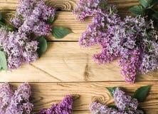 在木背景的淡紫色框架 库存图片