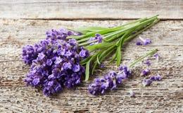 在木背景的淡紫色花 免版税图库摄影