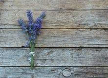 在木背景的淡紫色 库存图片