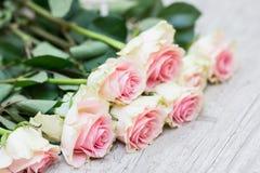 在木背景的玫瑰 免版税图库摄影