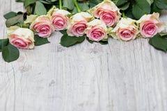 在木背景的玫瑰 免版税库存图片