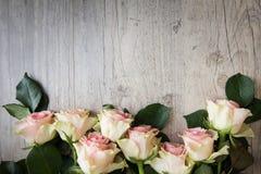 在木背景的玫瑰 库存照片