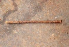 在木背景的生锈的钉子 免版税库存照片