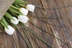 在木背景的白色郁金香 免版税库存图片