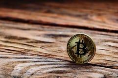 在木背景的硬币bitcoin 免版税库存图片