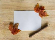 在木背景的秋叶与拷贝空间 库存图片