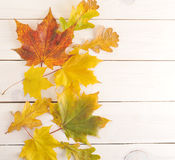 在木背景的秋叶与文本的空白的地方 免版税图库摄影
