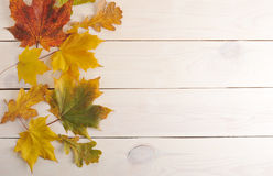 在木背景的秋叶与文本的空白的地方 库存图片