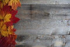 在木背景的秋叶框架 库存照片