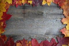 在木背景的秋叶框架 免版税图库摄影