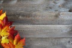 在木背景的秋叶框架 免版税库存图片