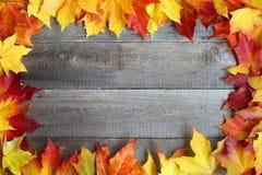 在木背景的秋叶框架 图库摄影