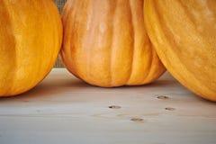 在木背景的秋天南瓜在一个土气样式 库存图片